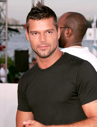 ricky martin sells house