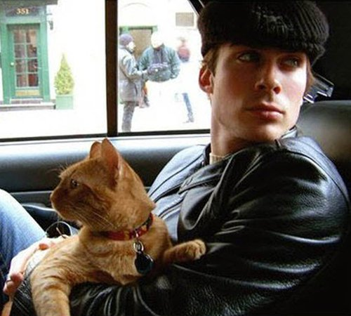 Ian-Somerhalder-cat-lover